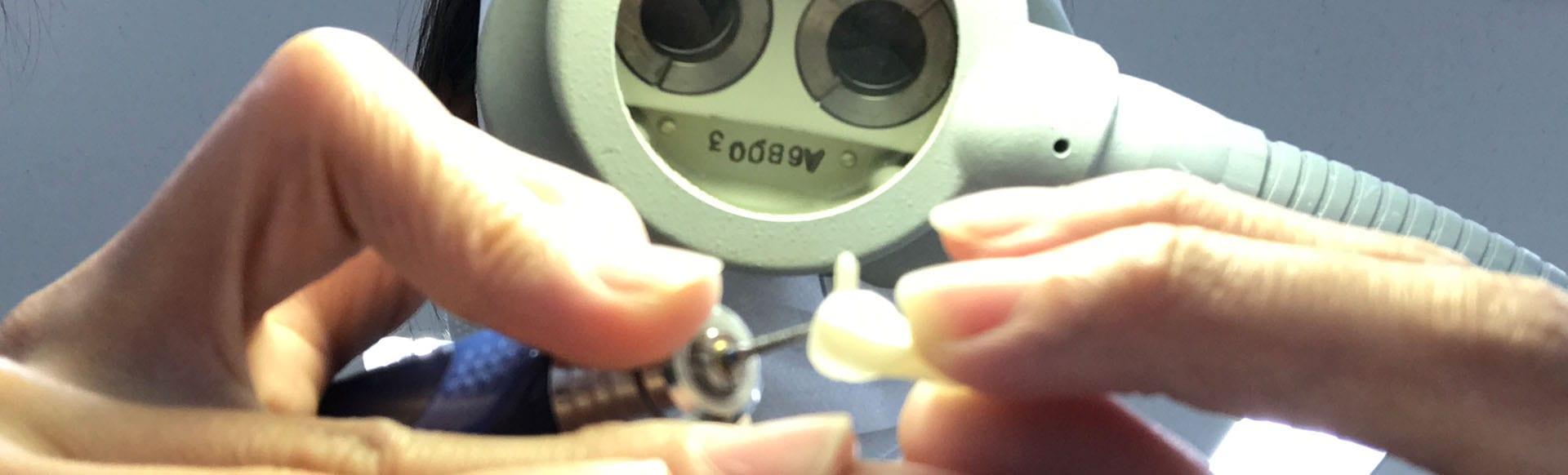 dental prosthesus